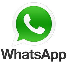 WhatsApp +56998251940